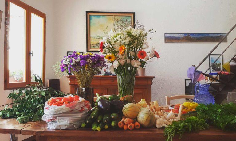 Le retour du marché : des légumes locaux et bio